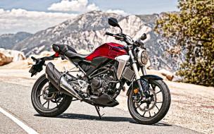 2019 honda cb300r, мотоциклы, honda, красный, новый, вид, сбоку, cb300r, 2019, японские, citybike
