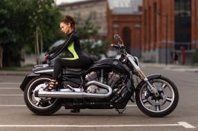 брюнетка и harley davidson, мотоциклы, мото с девушкой, деревья, харли, дэвидсон, высокие, каблуки, брюнетка, женщины, с, мотоциклами