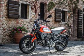 ducati scrambler, мотоциклы, ducati, мотоцикл, scrambler
