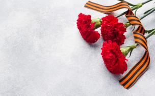 праздничные, день победы, георгиевская, лента, гвоздика, 9, мая