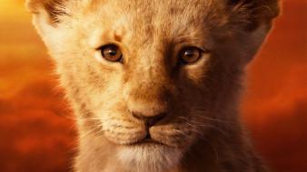 кино фильмы, the lion king , 2019, зверь
