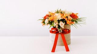 альстромерия, розы