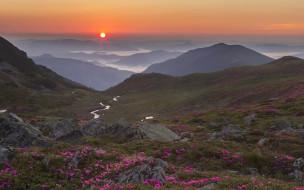 природа, пейзажи, румыния, луга, утро, рассвет, туман, ручей, камни