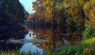 обои для рабочего стола 2501x1456 природа, реки, озера, отражение, пруд, осень