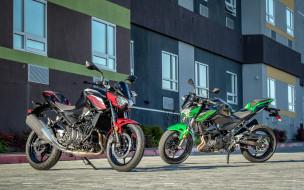 2019 kawasaki z400, мотоциклы, kawasaki, японские, z400, парковка, 2019, два, мотоцикла