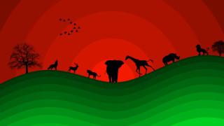 векторная графика, животные , animals, животные