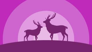 векторная графика, животные , animals, олени