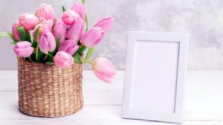 бутоны, ваза, рамка, тюльпаны