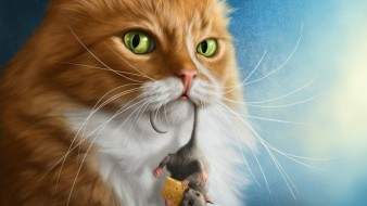 рисованное, животные, мышь, кот, сыр