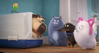 мультфильмы, the secret life of pets 2, the, secret, life, of, pets, 2