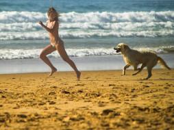 море, купальник, собака, песок