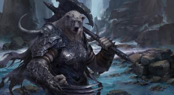 медведь, латы, фон