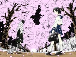 сакура, аллея, школьница, петля, учитель