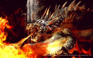 пламя, calendar, 2019, огонь, дракон