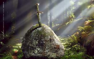 камень, природа, дерево, лес, растение, calendar, 2019, оружие