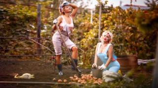 картошка, лопата, женщина, ситуация