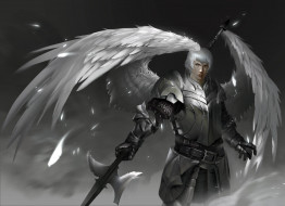 крылья, взгляд, латы, фон, мужчина