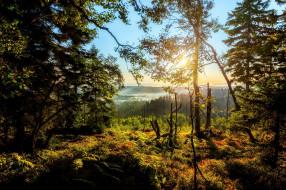 природа, пейзажи, простор