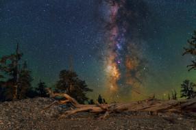 milky way, космос, галактики, туманности, млечный, путь