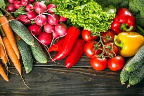 салат, редис, огурцы, перец, морковь, помидоры