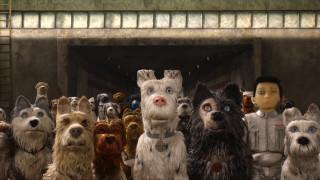 isle of dogs, мультфильмы, -unknown , разное, тоннель, мальчик, собаки