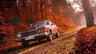 1979 Chevrolet Monte Carlo
