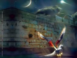 calendar, 2019, ночь, конь, стена, крылья, лошадь