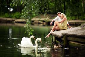 влюбленные, озеро, лебеди