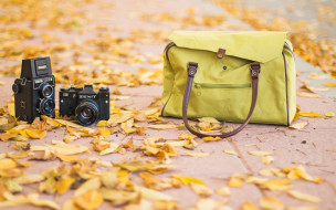 бренды, зенит, осень, камера, фотоаппарат, листья, сумка