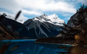 природа, пейзажи, горы, озеро, дерево