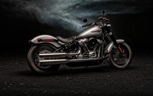 sofail slim, американские мотоциклы, серый, новый мотоцикл, экстерьер, классический, sofail slim, harley davidson, 2020