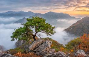 природа, пейзажи, южная, корея, азия, горы, деревья, ландшафт, скала