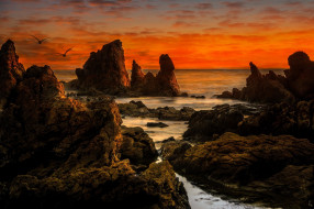 природа, побережье, простор