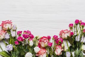 эустома, розы