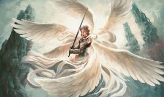 крылья, меч, латы, фон, мужчина