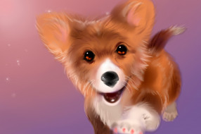 рисованное, животные,  собаки, взгляд, фон, собака