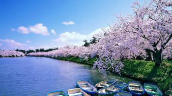 корабли, лодки,  шлюпки, парк, река, весна