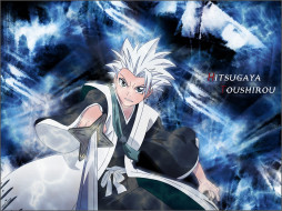 аниме, bleach, gotei, 13, меч, оружие, hitsugaya, toushirou, капитан