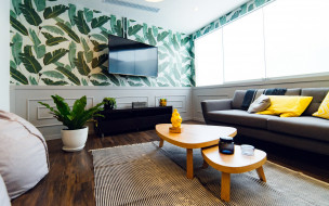 телевизор, подушки, диван