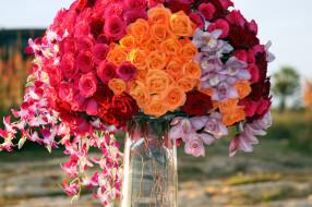 цветы, букеты,  композиции, орхидеи, розы