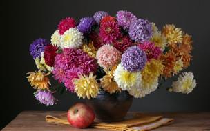 цветы, астры, яблоко