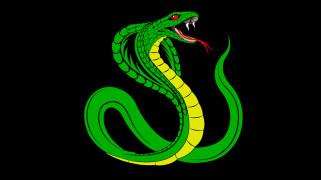 чёрный, змей, зелёная, змея, Кобра, фон, рептилия, зубы, язык, яд