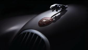ягуар, темный фон, автомобиль, эмблема