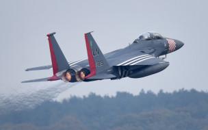 f-15e strike eagle, авиация, боевые самолёты, ввс, сша, истребитель, бомбардировщик, strike, eagle, f15e, mcdonnell, douglas