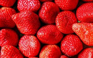 ягоды, клубника, макро