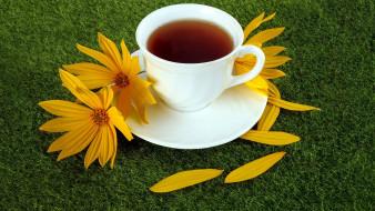 космея, лепестки, чай