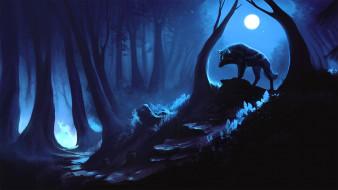 фэнтези, существа, волк, лес
