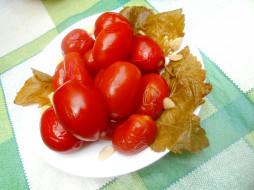 еда, помидоры, соленья