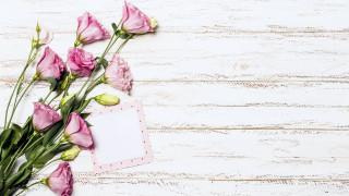 цветы, эустома, бутоны