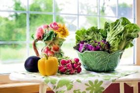 еда, овощи, перец, редис, салат